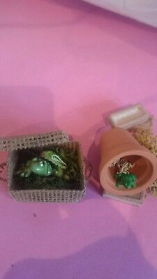 dolls house 12th scale rescued frogs wildlife for your garden