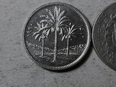 Iraq 50 fils 1981 Palms . uncirculated