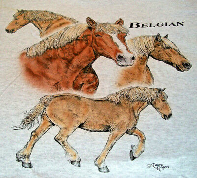 "Belgian Horse T-shirt  "" Natural "" Medium ( 38 ~ 40 )"