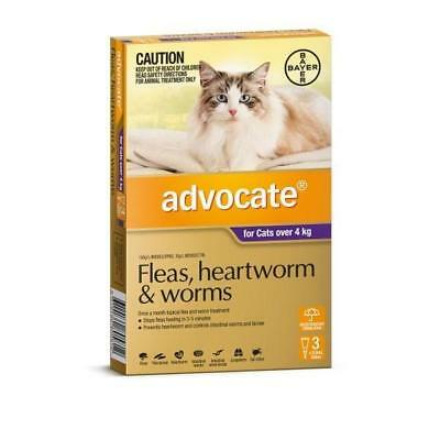 Advocate 3 Pack Large Cat over 4kg for fleas, heartworm and worms