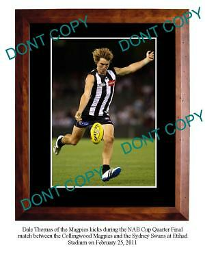 Dale Thomas Collingwood Fc Star Large A3 Photo Print 3
