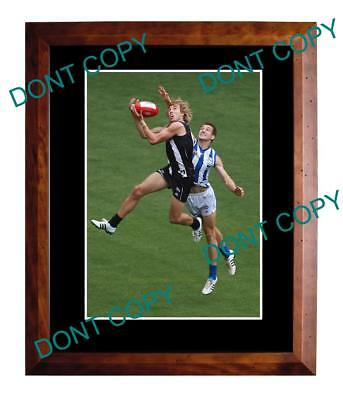 Dale Thomas Collingwood Fc Star Large A3 Mark Photo 2