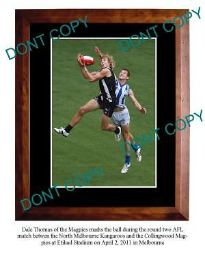 Dale Thomas Collingwood Fc Star Large A3 Photo Print 4