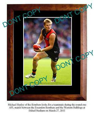 Michael Hurley Essendon Fc Star Large A3 Photo Print 5