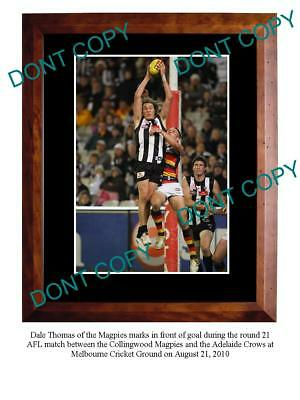 Dale Thomas Collingwood Fc Star Large A3 Photo Print 1