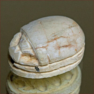 Egyptian scarab engraved with hieroglyphs. 3464