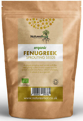 Organic Fenugreek Sprouting Seeds - Garden Superfood Non GMO Microgreen Sprouts