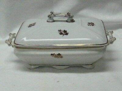 IRONSTONE TEA LEAF SERVING DISH by  T. FURNIVAL & SONS