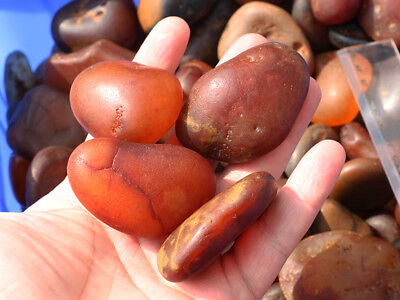 WHOLESALE  1lb Natural Madagascar Fire Red Agate Chalcedony Rough Crystals Stone