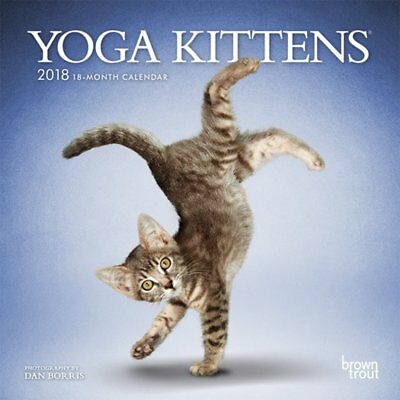 "BrownTrout Yoga Kittens 2018 Mini Monthly Wall Calendar 7"" x 7"" 18 Months"