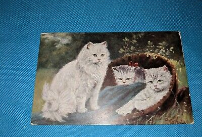 Cats, 3 cats chilling!Vintage postcard.