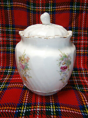 Antique Collectable  Hand Painted Floral Victorian Biscuit Barrel / Canister Jar