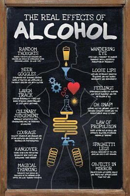 109066 The Real Effects of Alcohol Funny Chart Decor WALL PRINT POSTER UK