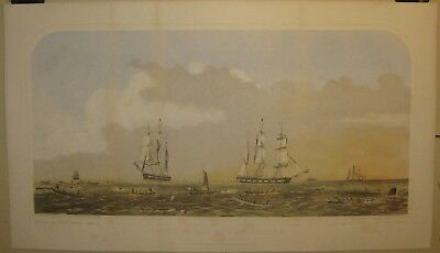 Antique 'SPERM WHALING & ITS VARIETIES' JH Bufford CURRIER School LITHOGRAPH