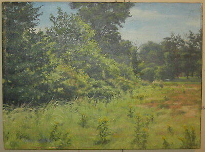 Original DAVID CURTIS New England Landscape OIL PAINTING - Listed Impressionist