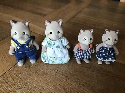 Sylvanian Families Mulberry Raccoon Family