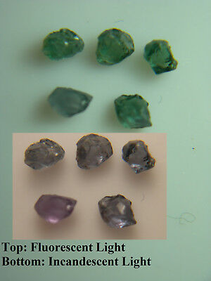 rare ALEXANDRITE rough 0.49ct 5 piece gemmy Russia gem Color Change Green Purple