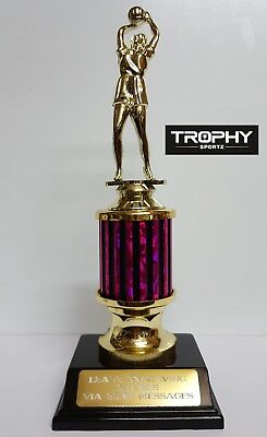 NETBALL TROPHY,235mm High ,all tough plastic,free engraving , $8.00  post