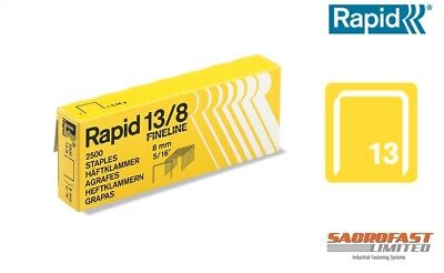 Rapid 13/08 Staples