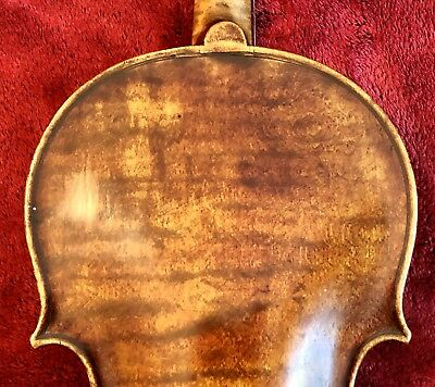Old Amati Label Violin Nice One Piece Back From Estate