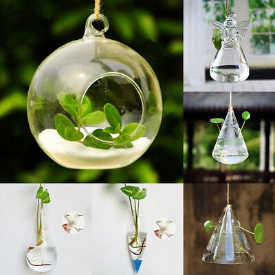 Small Transparent Wall Hanging Flower Glass Planter Vase Fish Tank Terrarium