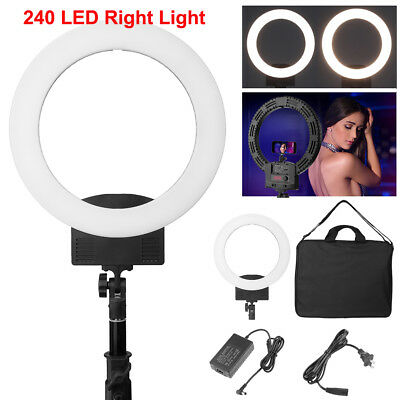 36W 240 LED Ring Light Dimmable 5500K Lighting Studio Video Continuous Lamp Kit