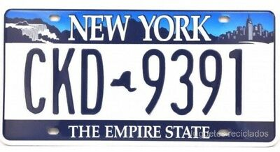 Matricula New York License Plate 30X15 Cms