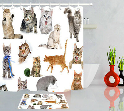 A Collection Of Cute Cat New Long Waterproof Fabric Shower Curtain Sets 71X79''