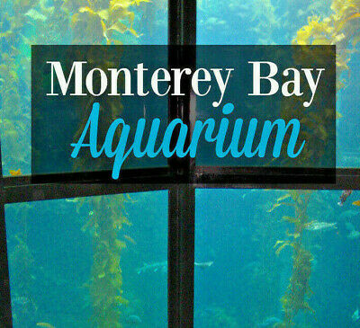 Monterey Bay Aquarium Tickets A Promo Discount Tool