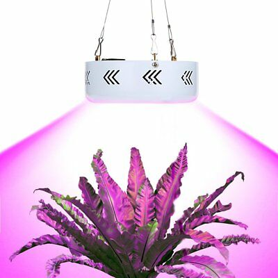 Hydro 300W LED Pflanzen Lampe Full Spectrum Pflanze Grow Light UV Wachsen Licht