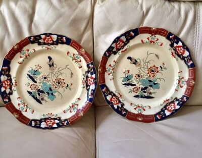 PAIR MASONS IRONSTONE LARGE DINNER PLATES EARLY 19th Century FLORAL ENGLAND 10''