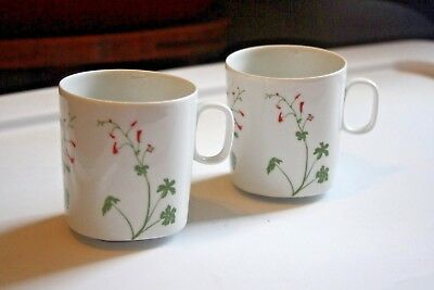 Block Langenthal Switzerland Set of 2 Mugs Larkspur Henry Evans Floral Portrait