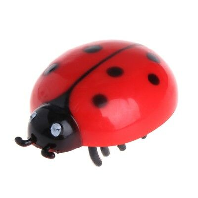 Cat Toys Teaser Interactive Pet Beetle Cicada Auto Electric Walking Insect Gifts