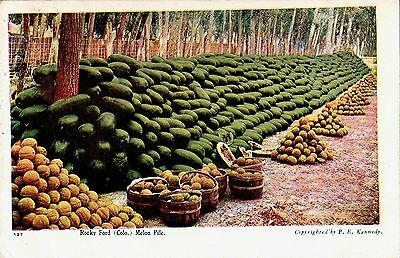 Original Vintage 1900 Rocky Ford Melon Pile Colorado Post Card Stamped and Used