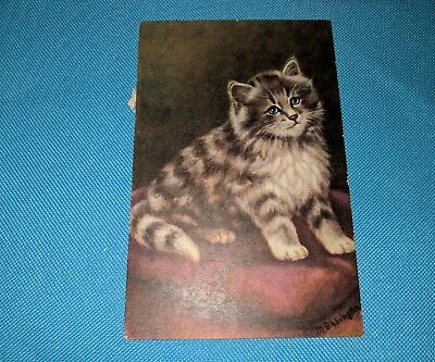 Cat. Cute kitty. Vintage postcard.
