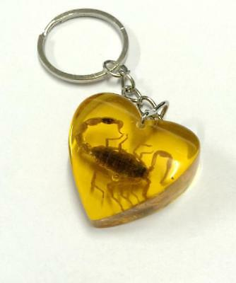 Huge Scorpion Insect Jewelry  Yellow Scorpion Heart Design Key-Chains Y04