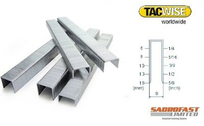 2 Boxes 71 Series Staples By Tacwise
