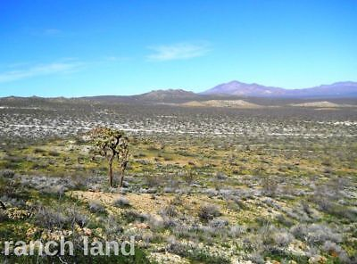 Owner Finance 40 ac Southern CA land, Adelanto Apple Valley Hesperia Victorville