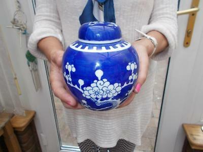 Antique Chinese Export Blue Prunus Ginger Jar Lovely Condition Blue Rings Mark