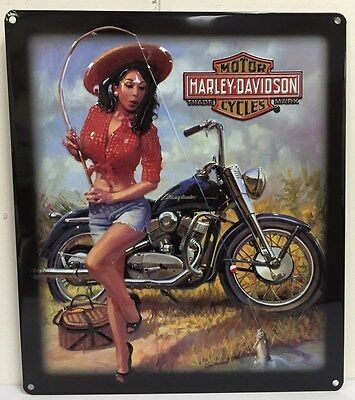 Ande Rooney HARLEY DAVIDSON NICE CATCH BABE Fishing Girl Tin Motorcycle HD Sign