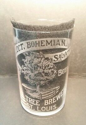 Rare Pre Pro Green Tree Brewery Bohemian Lager Beer St Louis MO Glass
