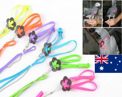 Adjustable Parrot Bird Harness Multicolored