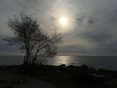 Digital Photo Picture Image - Early Morning Lakeside - Free Shipping
