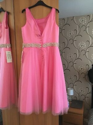 2c3951ce68 Prom Dress Stacees. Hand Made Brand New Beautiful Bridesmaid Size 14 - 16