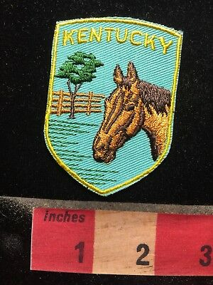 YELLOW LETTER Version Kentucky Racehorse Horse Patch 69NN