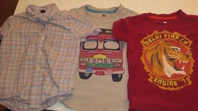 lot of tea collection tees and shorts size 4 boys