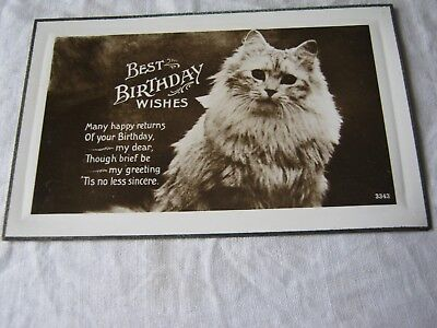 Vintage Greetings Postcard Best Birthday Wishes Cat 1920s
