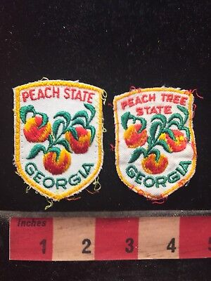 Vtg Georgia PEACH TREE VARIATIONS Patch Lot - One Has The Word STATE 70WZ