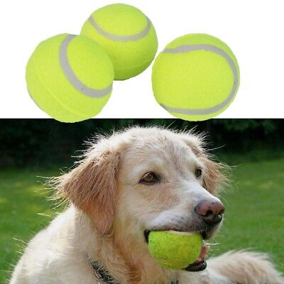 Tennis Ball Sports Tournament Outdoor Cricket Beach Dog Activity Game Funny Toy