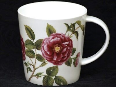 STECHCOL GRACIE ROSA GALLICA Bone China V Shape Mug